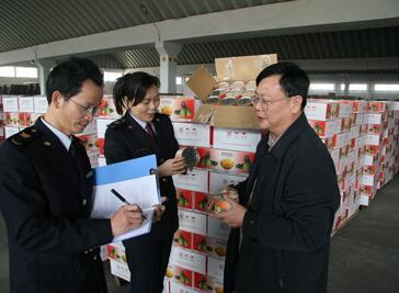台湾食品进口报关,海关查验现场