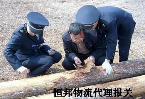 俄罗斯木材进口海关检疫