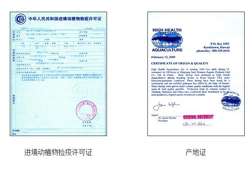 进境动植物检疫许可证样本