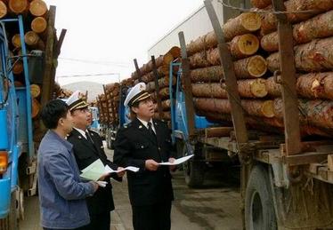 木材进口报关代理海关查验
