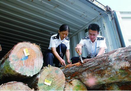 菲律宾木材进口清关流程