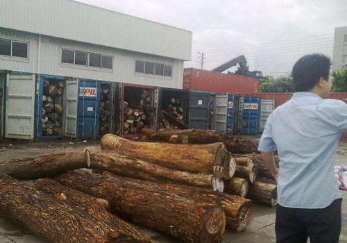 各类进口木材货场装卸