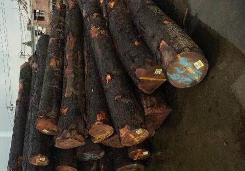 海关对进口木材查验审价