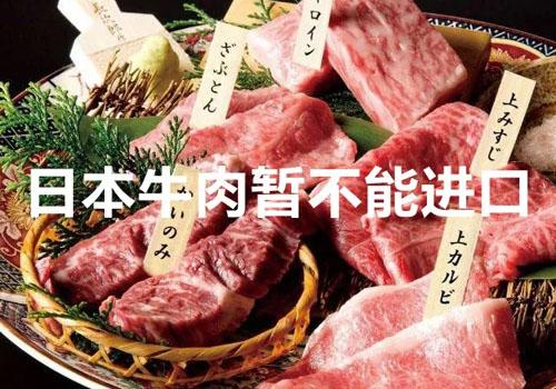 日本牛肉不能进口