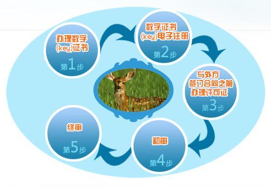 《进境动植物检验检疫许可证》办理流程