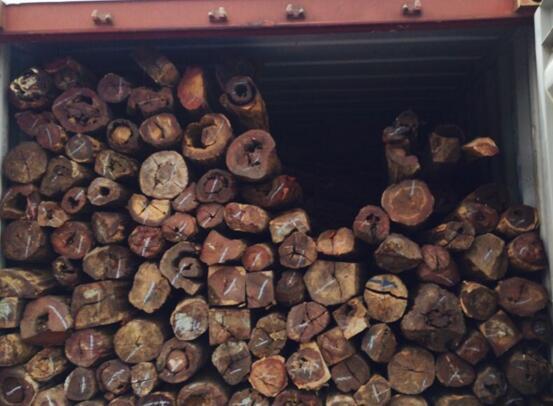 木材进口报关接受海关查验